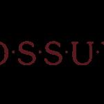 Agence Bossuyt
